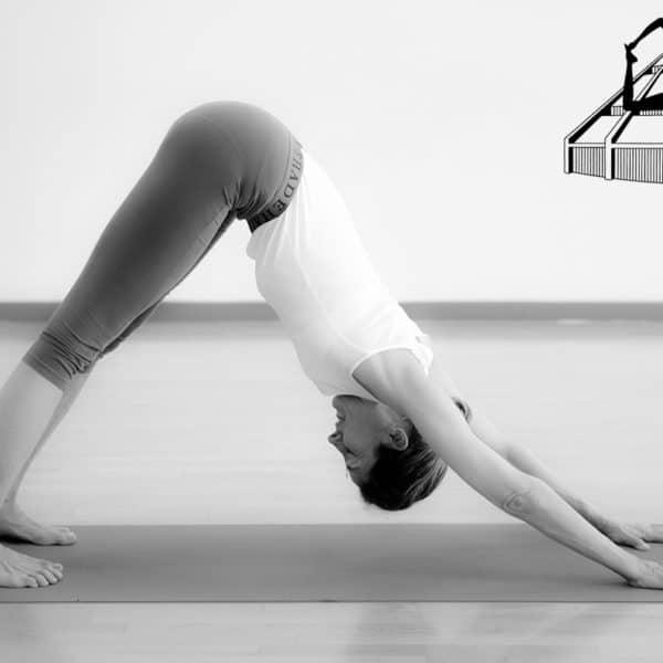Unique en Drôme, le yoga Iyengar à Montélimar